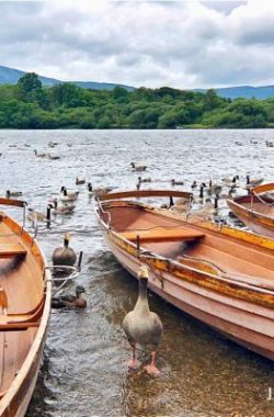 行程:英國湖區 Lake District
