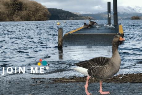 湖區 Lake District:溫德米爾湖(Windermere)