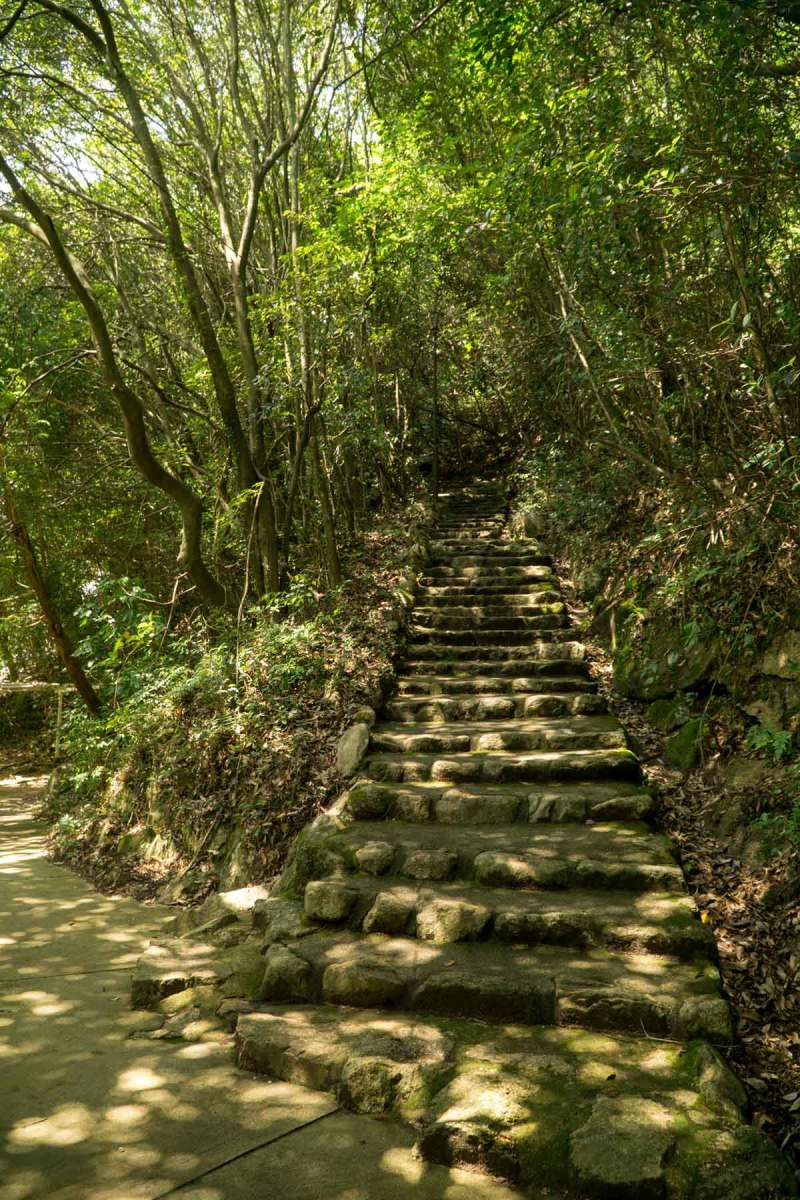 Stairs from waterfall