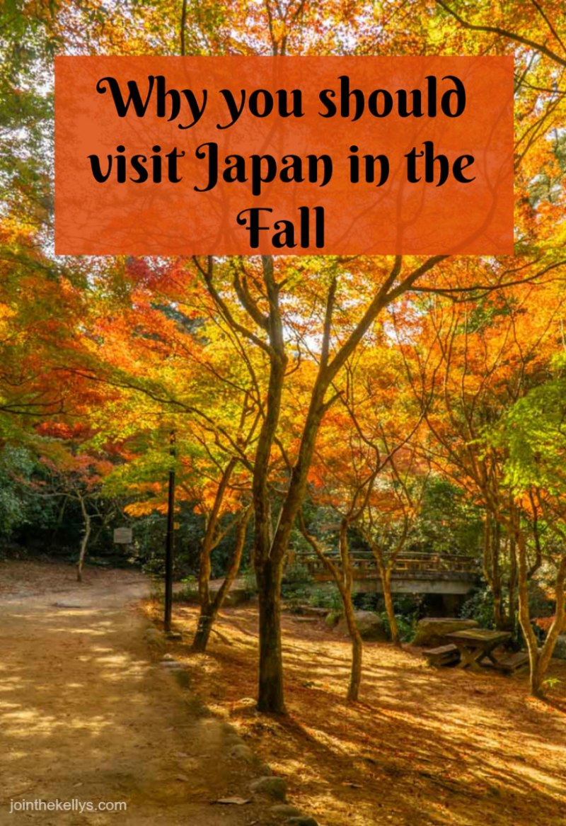 Visit Japan in the Fall