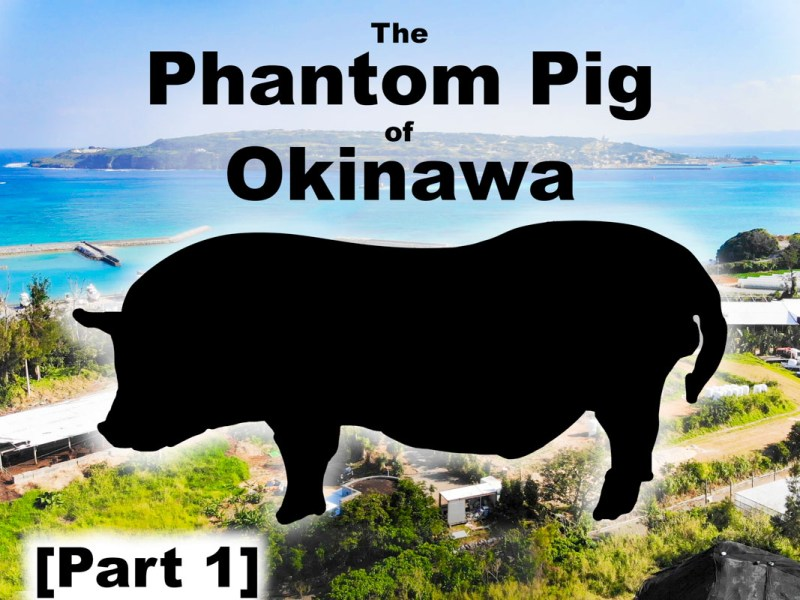 The Phantom Pig of Okinawa