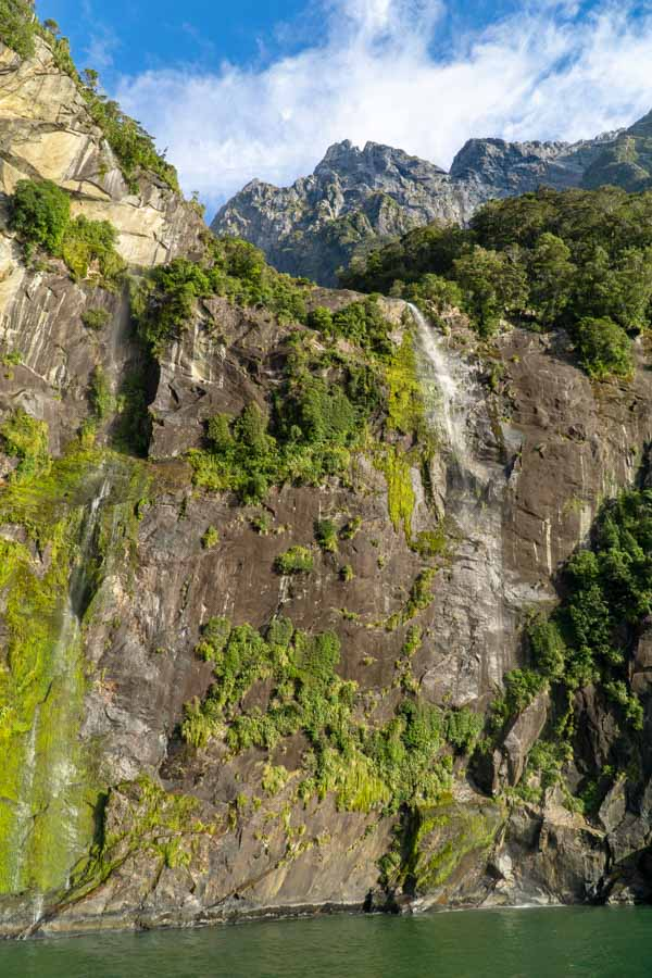 Milford Sound cliff views