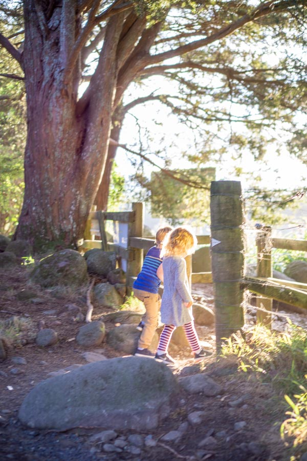 Wairere kids at base of trail