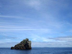 Hidden Treasures of the North Part 1: Poor Knights Islands