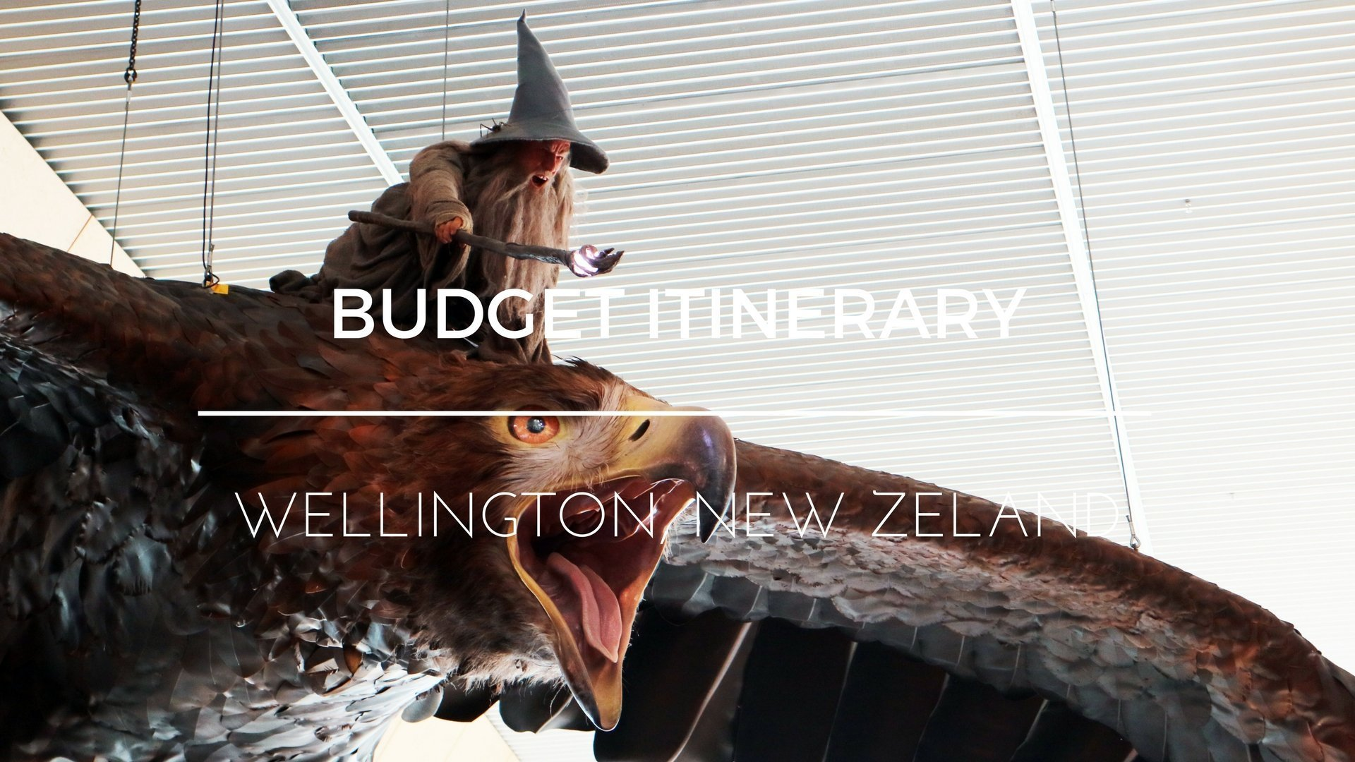 A Budget Travel Guide for Wellington, New Zealand