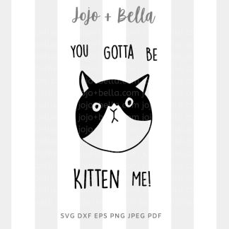 you gotta be kitten me svg - cat cut file for Cricut and silhouette