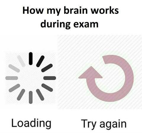 How my brain works during exams