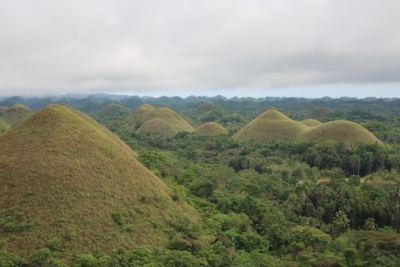 Filipinas - Bohol (10)