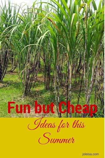 Fun but Cheap Ideas for This Summer