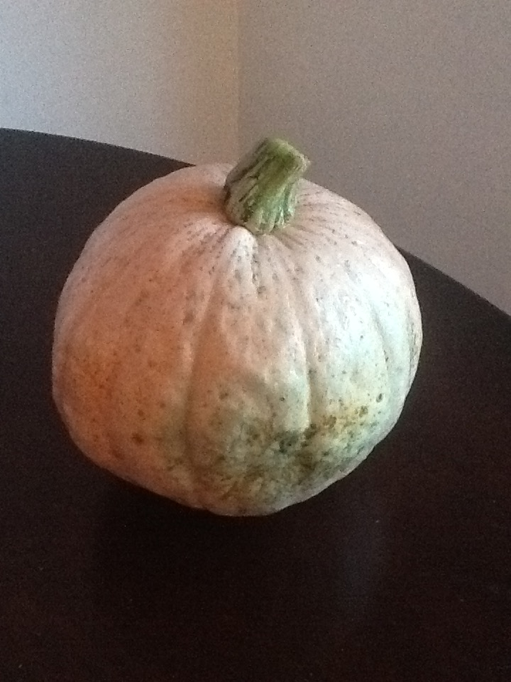 Ok yes I plant pumpkins. It's just one of my frugal living ways.