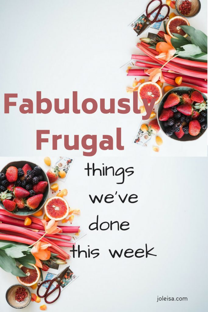 The frugal agenda is great as you are saving so much money. Each week I try to do even more and more super things so we can save for bigger things and save the environment.