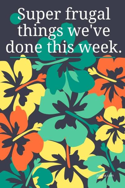 Super Frugal Things We Have Done This Week