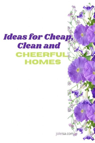 Cheap, Clean and Cheerful Homes