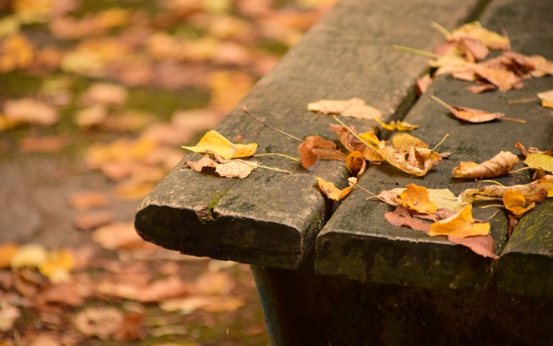The Mystery of Thanks in the Midst of Trials