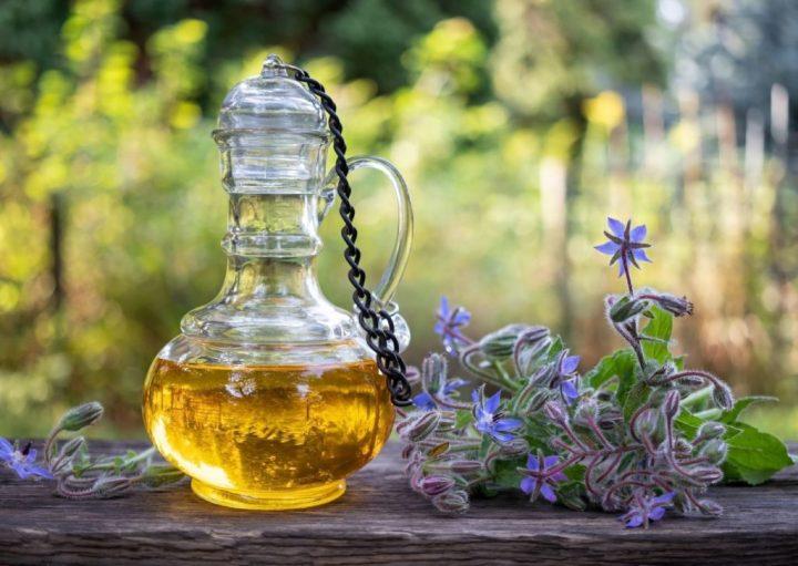 huile de bourrache