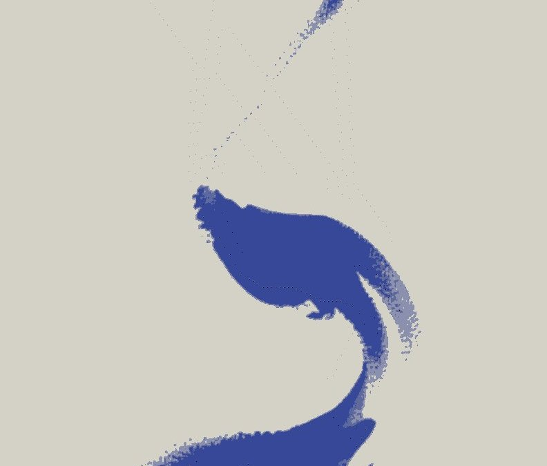 Logo de l'association Dialogue Autisme