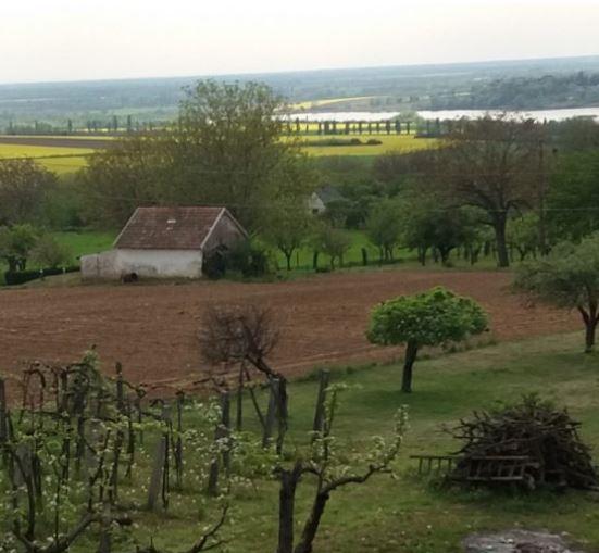 Látkép a turbéki szőlőhegyről