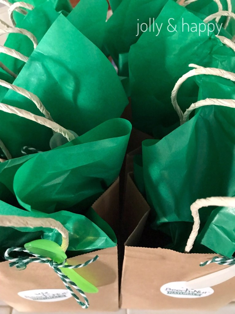 Goody bags for Beech Nut Naturals party