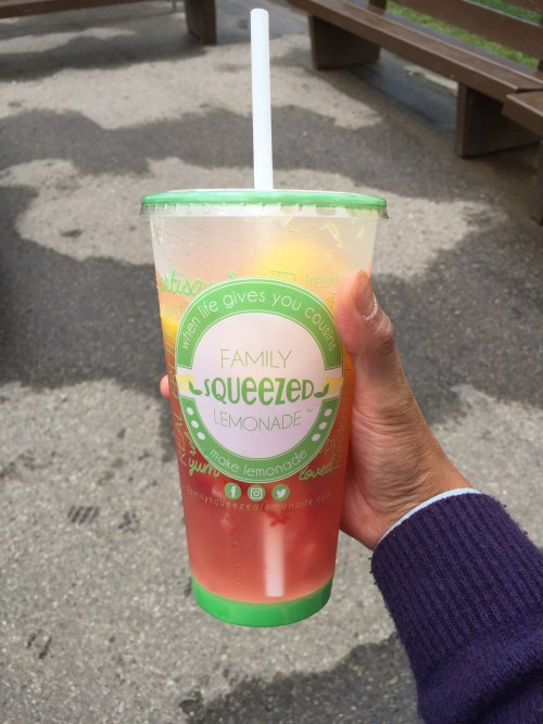 Large Strawberry Sterling from Family Squeezed Lemonade ($7).