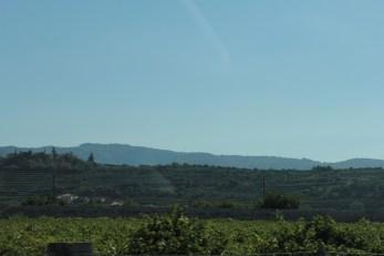 Valpolicella wine region, Italy.