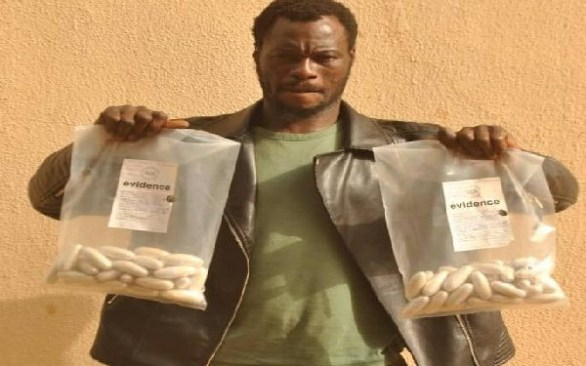 Drug Trafficker Arrested With 1bn Naira Worth Of Cocaine In Sokoto State