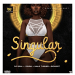 [Music] DJ Real feat. yonda, Idowest, & Wale Turna – Singular
