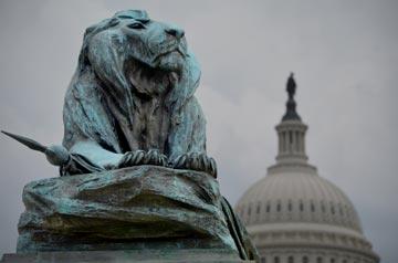 Lion Capitol