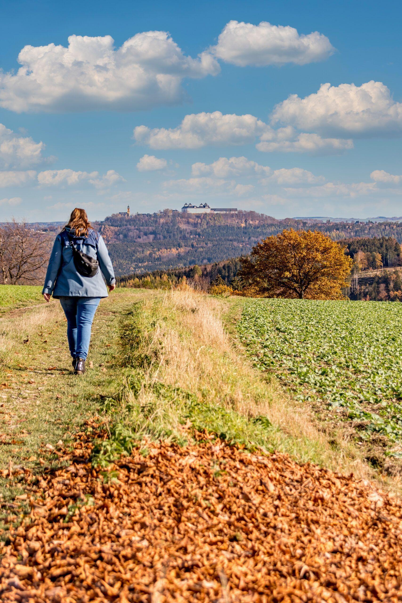 Feldweg mit Blick zur Augustusburg