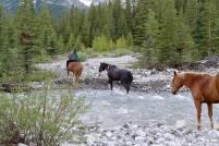 Eine Parkrangerin durchquert eine Furt mit Pferden