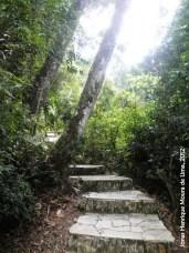 Escada em meio a trilha dos arenitos