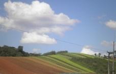 Área agrícola de Colombo-PR