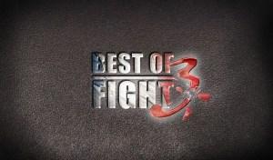 Logo Best of Fight