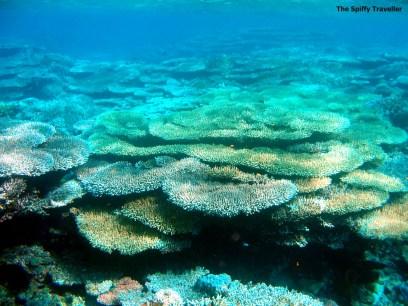 Bomba Atoll