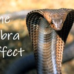 The Unintended Consequence Of The Cobra Effect