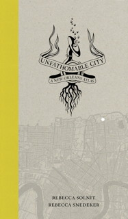 Book cover: Unfathomable City