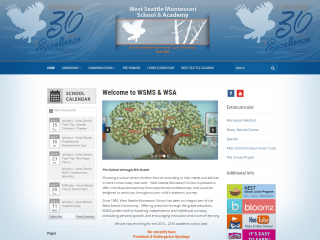 WSMS&A Website