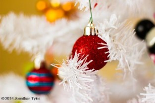 Ornament_IMG_1485