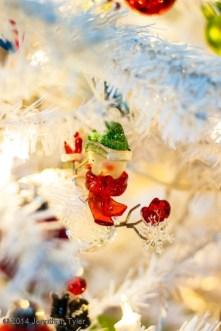 Ornament_IMG_1494