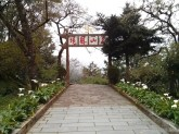 Alishan - shrine 2
