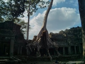 Angkor Archaeological Park - Preah Khan 10