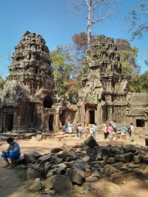 Angkor Archaeological Park - Ta Prohm 13