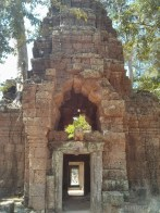 Angkor Archaeological Park - Ta Prohm 16