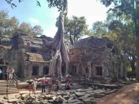Angkor Archaeological Park - Ta Prohm 22