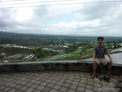 Balinese rice terraces - portrait 3