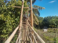 Bohol - Coco farm hostel bamboo skywalk 3