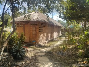 Bohol - Coco farm hostel dorm