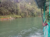 Bohol tour - Loboc river cruise view 2