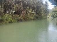 Bohol tour - Loboc river cruise view 3