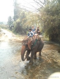Chiang Mai trekking - elephant riding over river 2