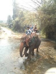 Chiang Mai trekking - elephant riding over river 2